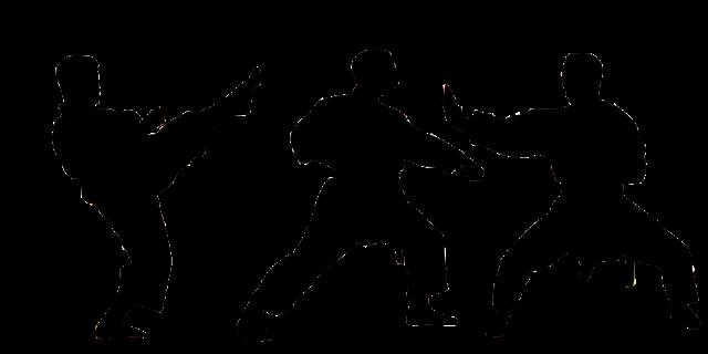 karate-4002261_960_720